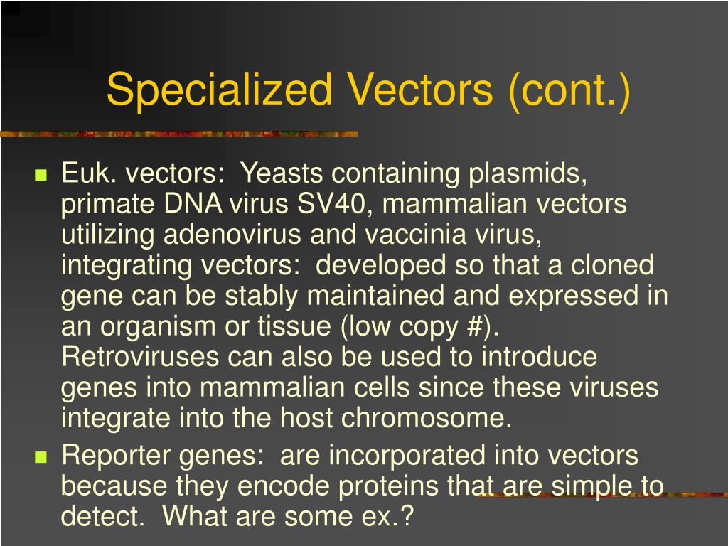 Specialized Vectors (cont.)