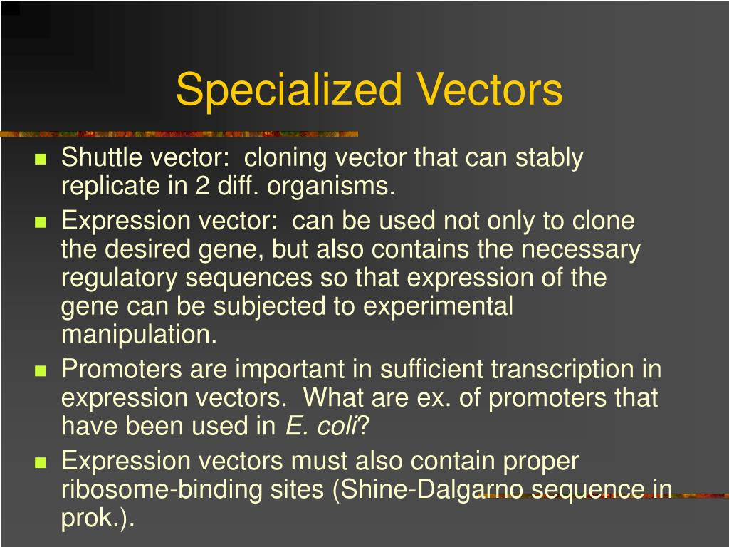 Specialized Vectors