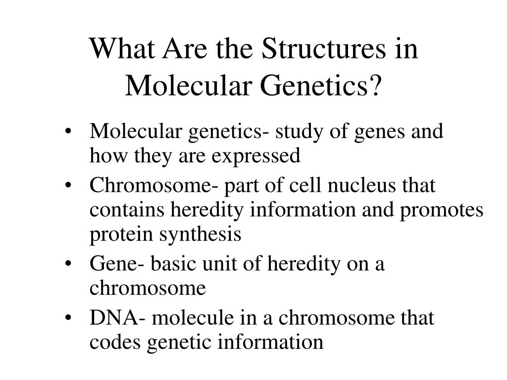 What Are the Structures in Molecular Genetics?