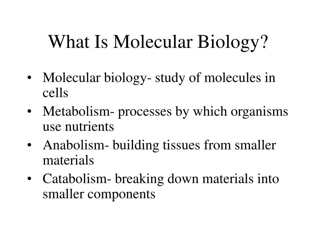 What Is Molecular Biology?