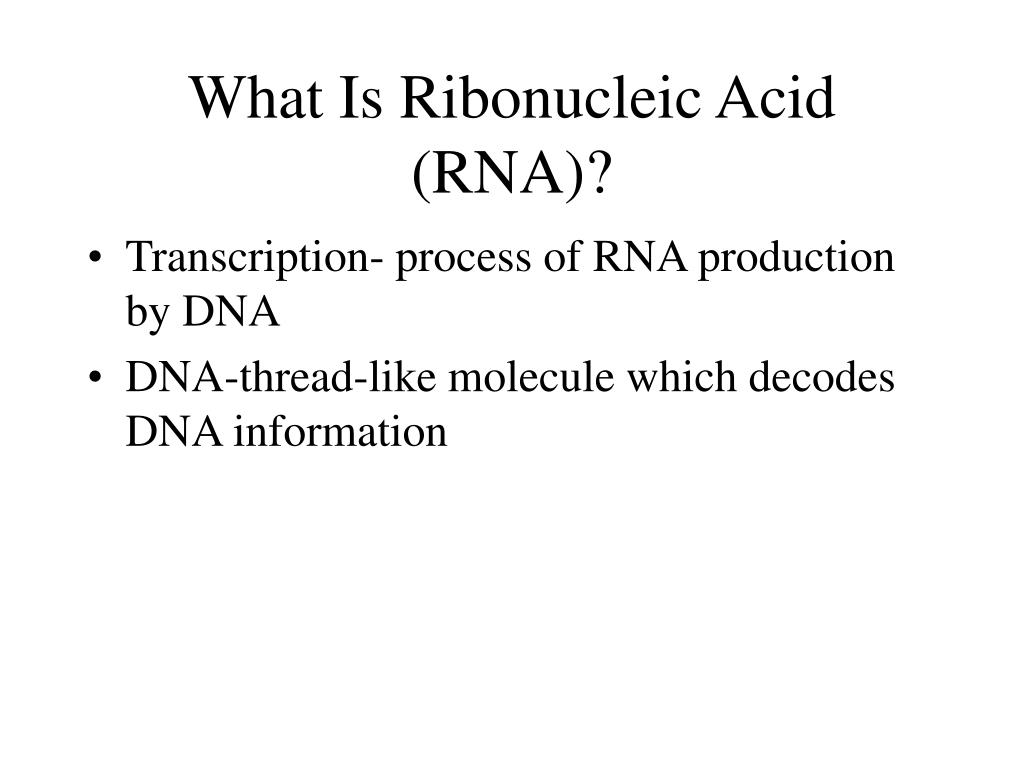 What Is Ribonucleic Acid (RNA)?