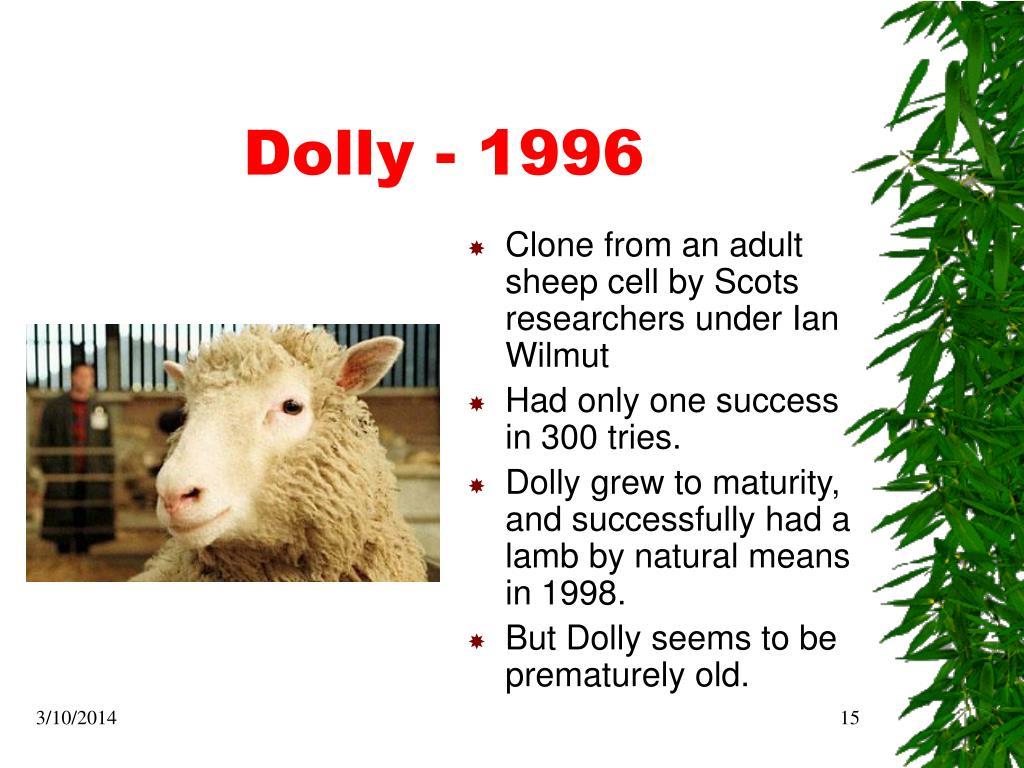 Dolly - 1996
