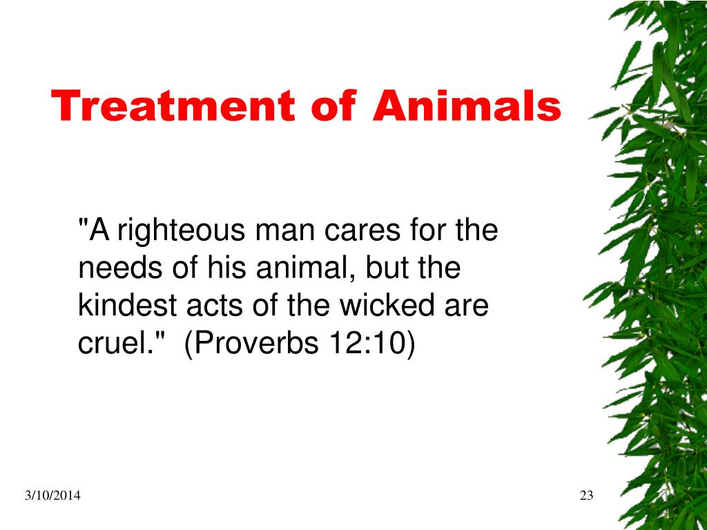 Treatment of Animals
