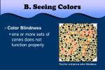 b seeing colors5