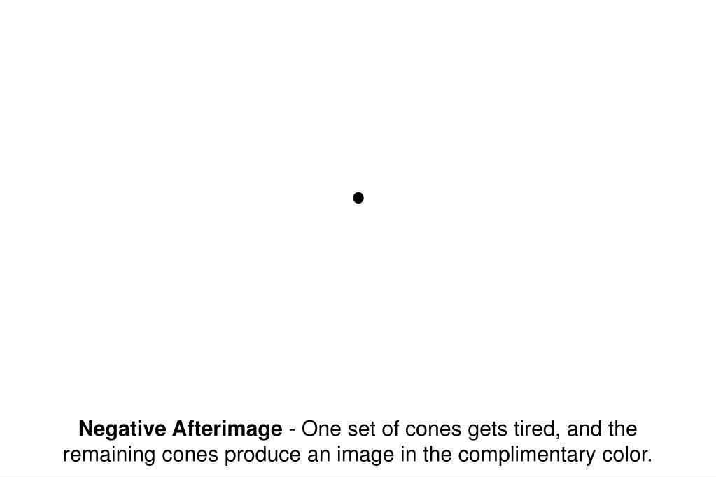 Negative Afterimage