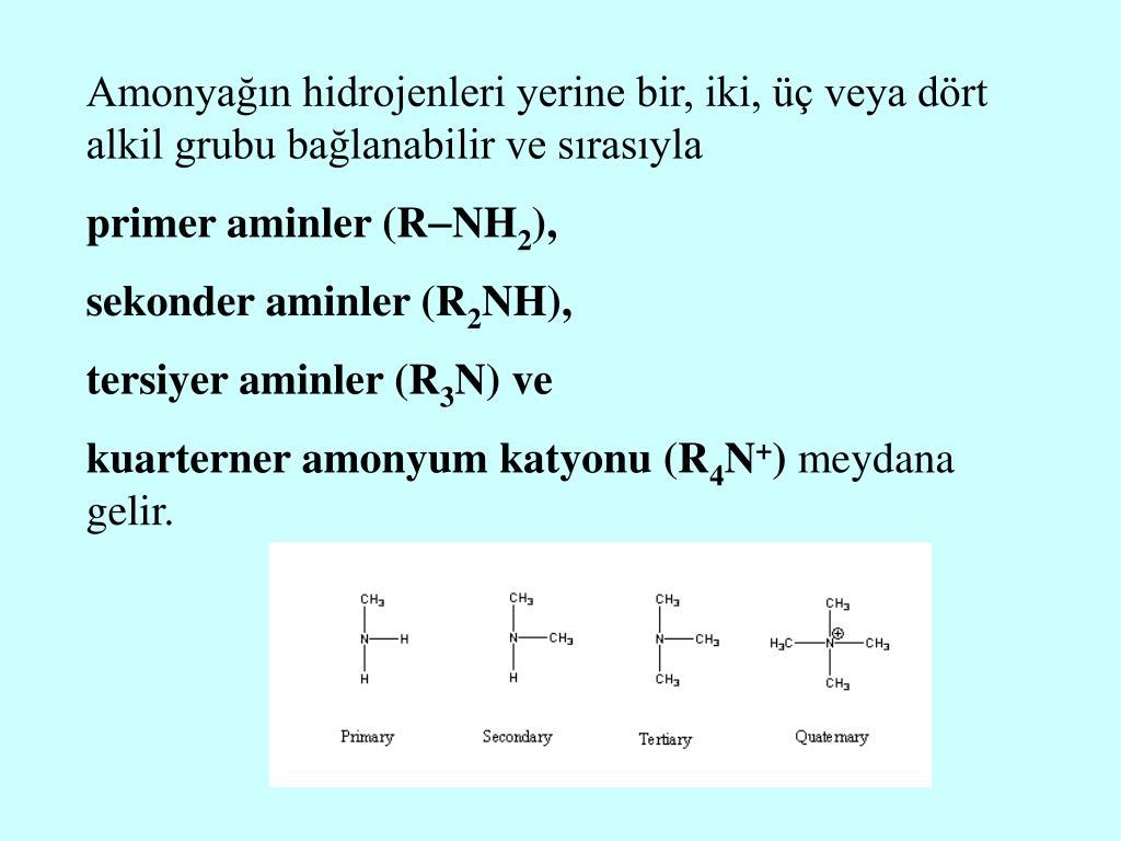 Amonyağın hidrojenleri yerine bir, iki, üç veya dört alkil grubu bağlanabilir ve sırasıyla