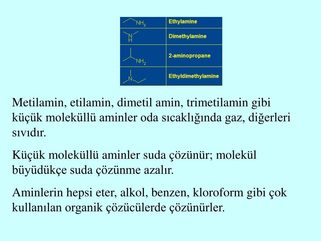 Metilamin, etilamin, dimetil amin, trimetilamin gibi küçük moleküllü aminler oda sıcaklığında gaz, diğerleri sıvıdır.