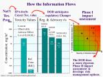 how the information flows