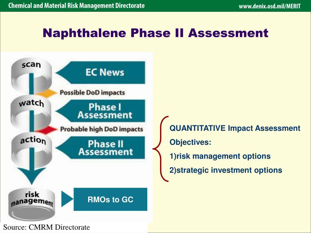 Naphthalene Phase II Assessment