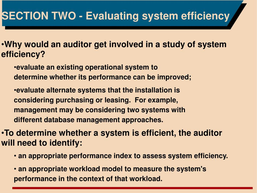SECTION TWO - Evaluating system efficiency