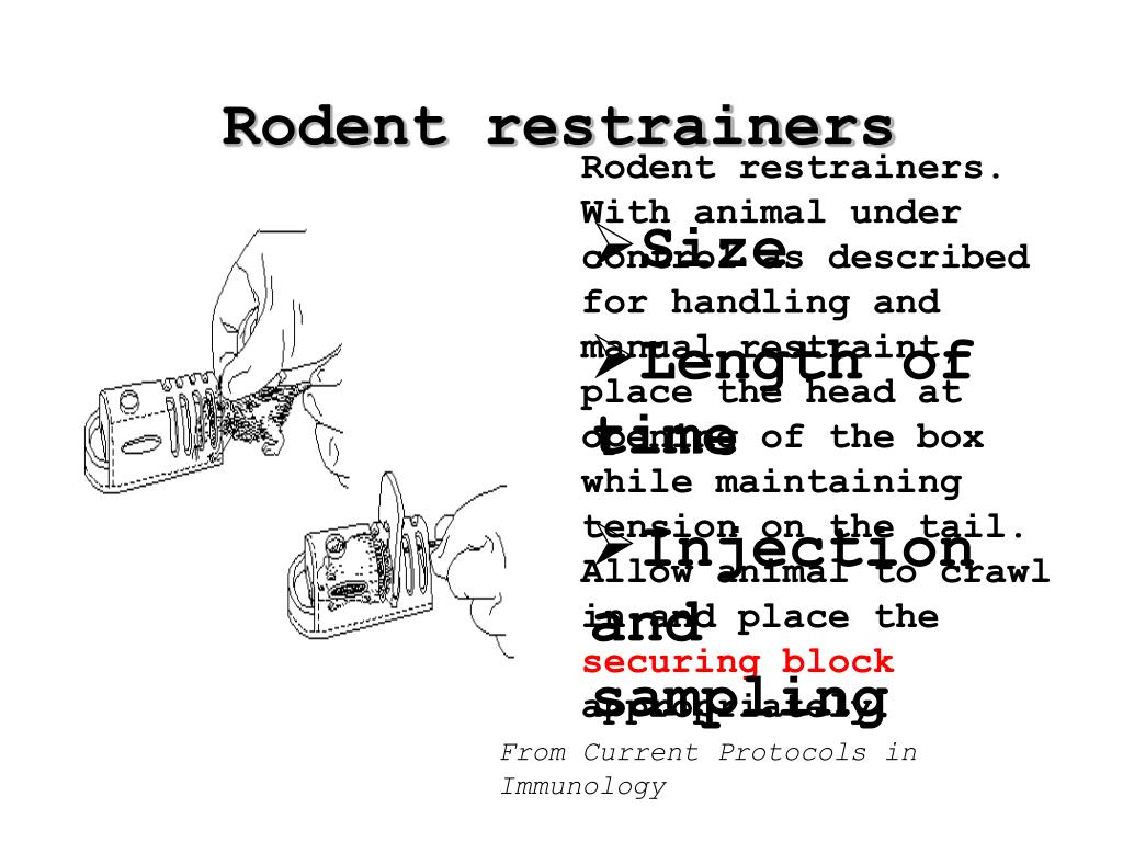Rodent restrainers