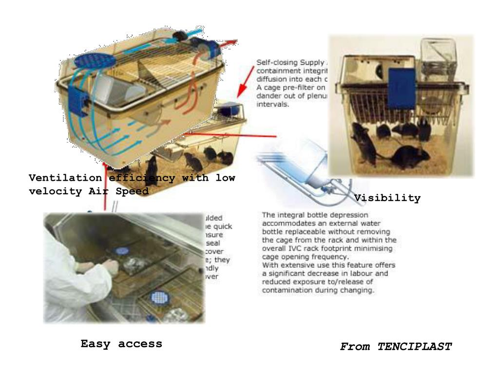 Ventilation efficiency with low velocity Air Speed