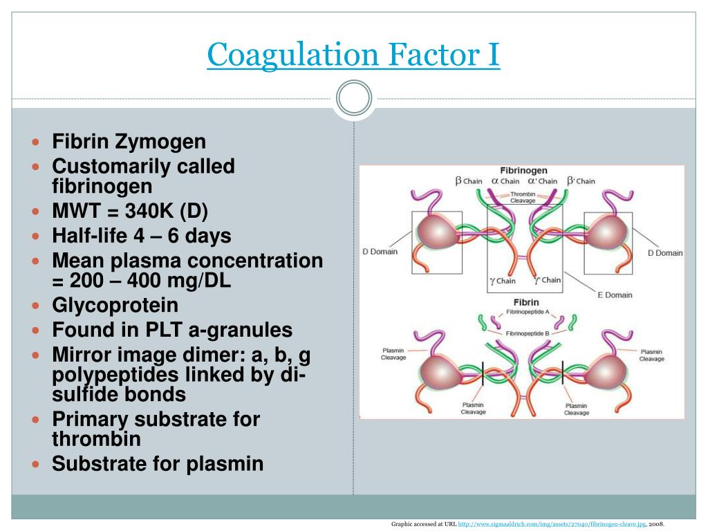Coagulation Factor I