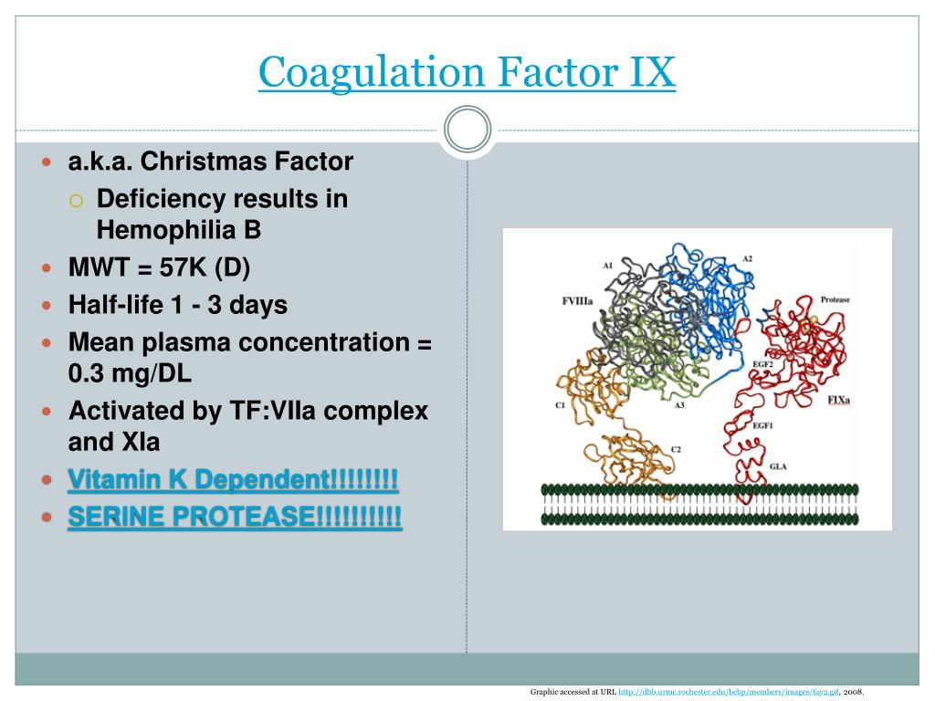 Coagulation Factor IX