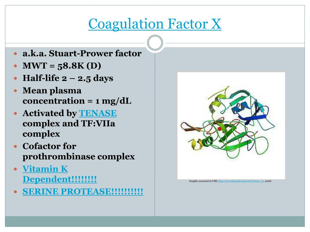 Coagulation Factor X
