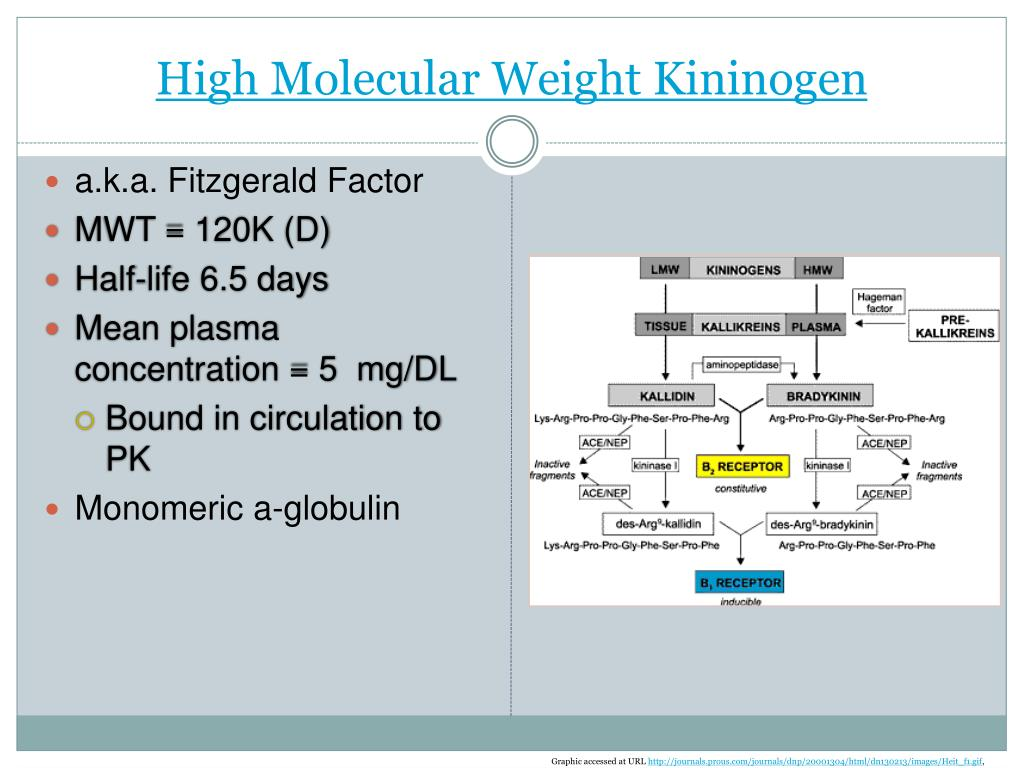 High Molecular Weight Kininogen