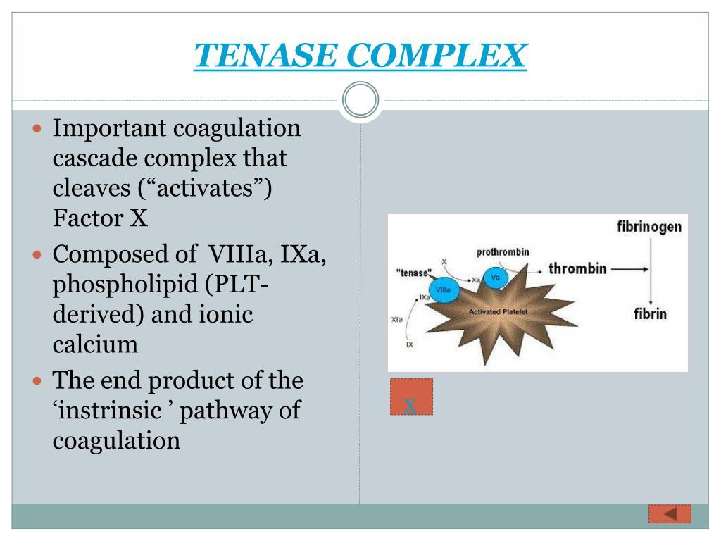 TENASE COMPLEX