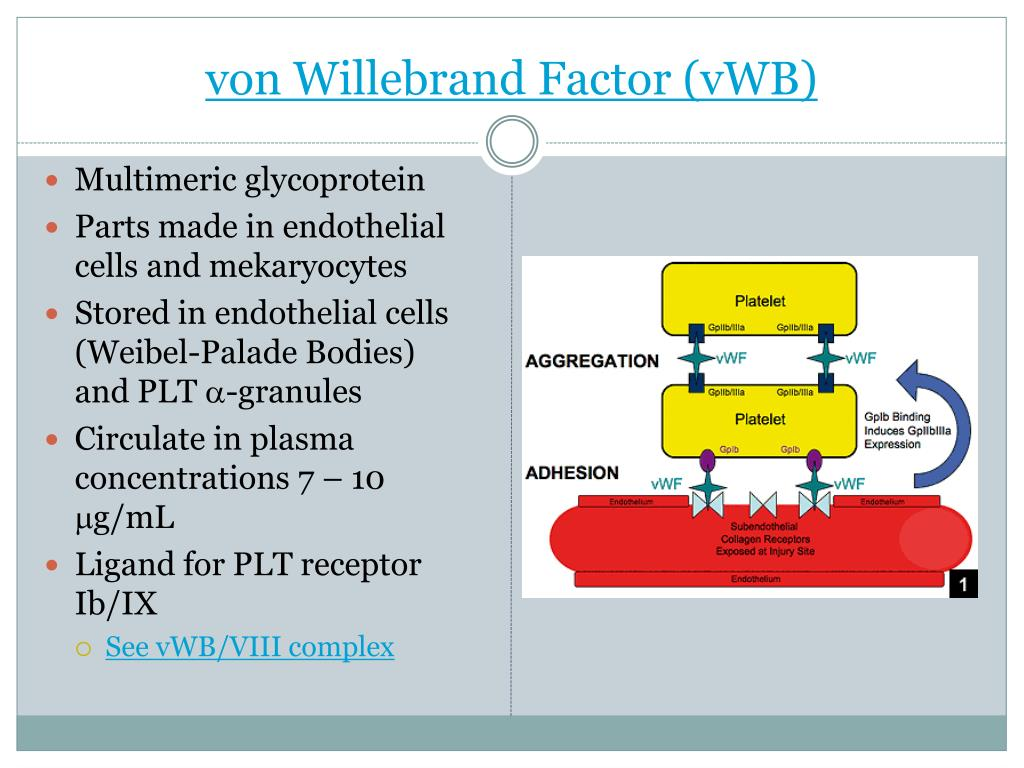 von Willebrand Factor (vWB)