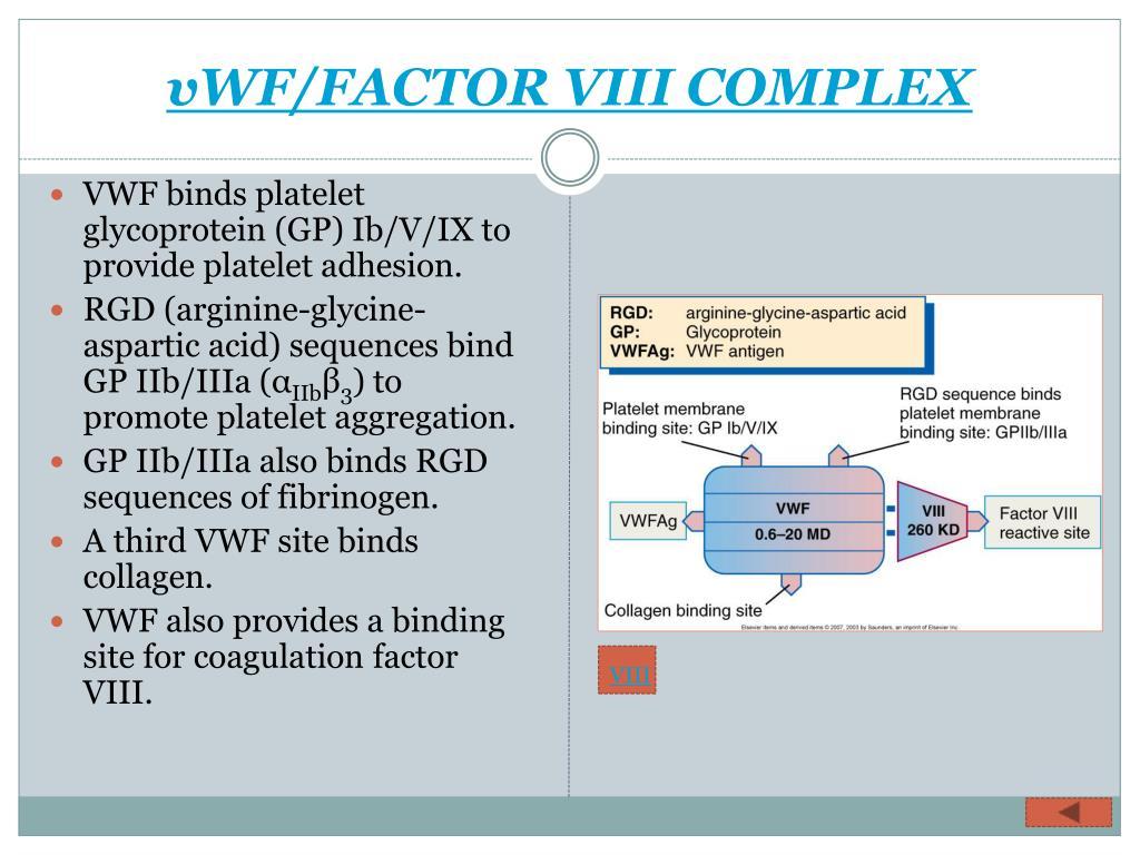 vWF/FACTOR VIII COMPLEX