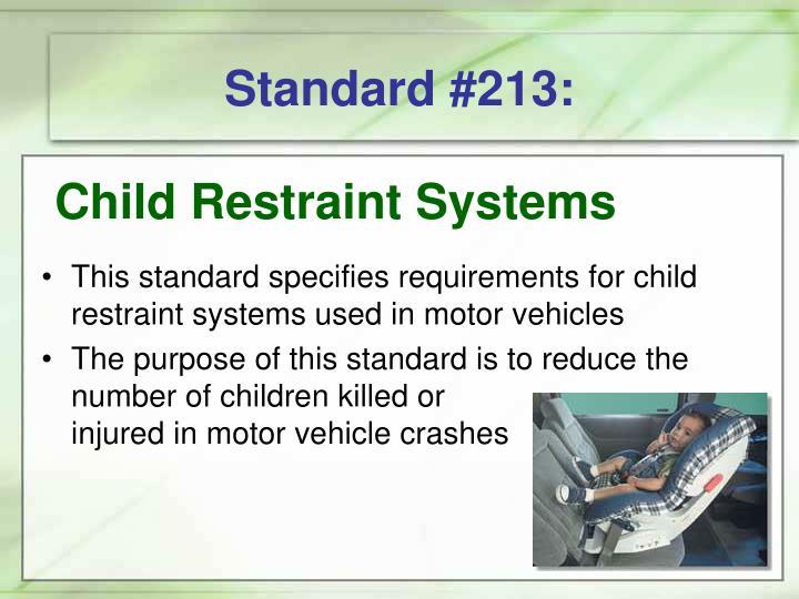 Standard #213: