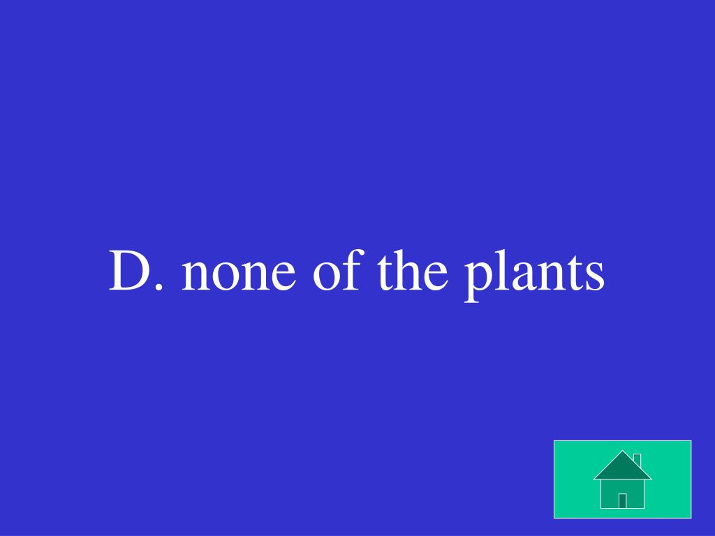 D. none of the plants