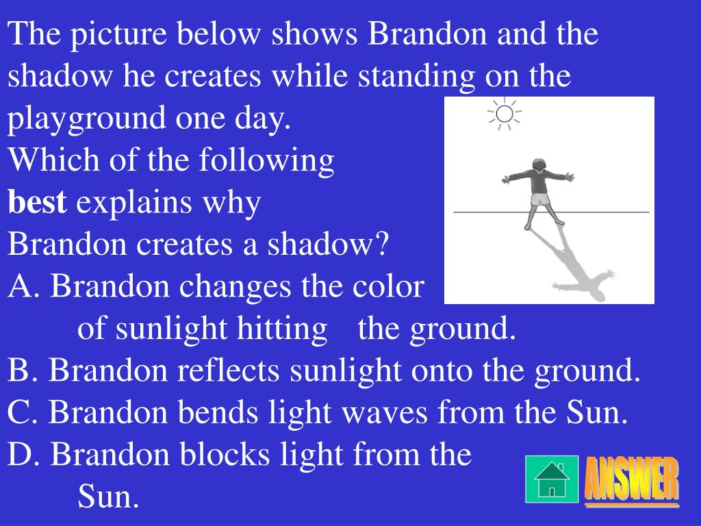 The picture below shows Brandon and the shadow he creates while standing on the playground one day.
