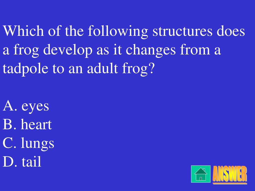 Which of the following structures does