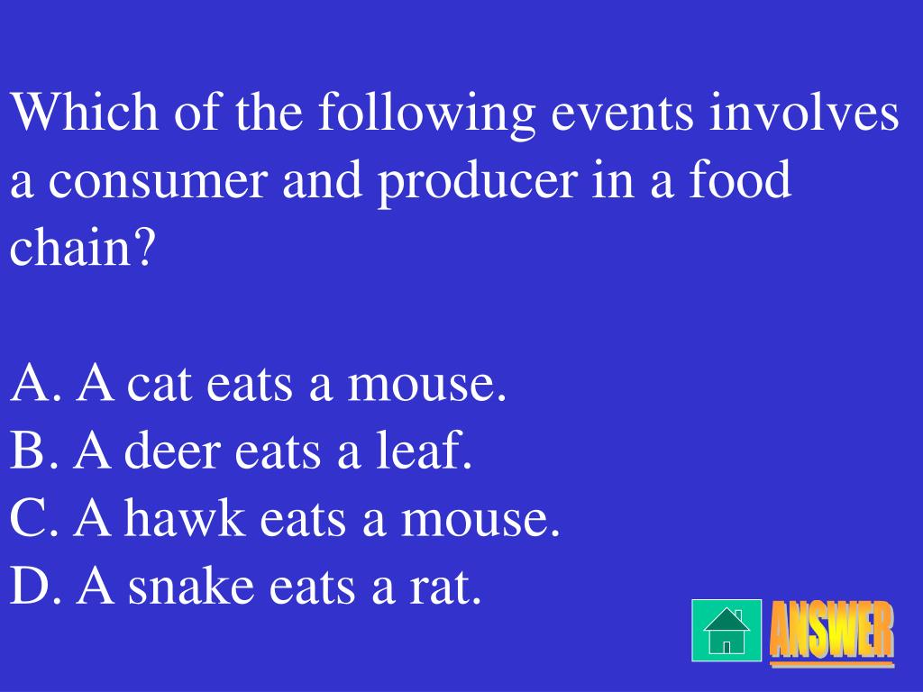 Which of the following events involves a consumer and producer in a food chain?