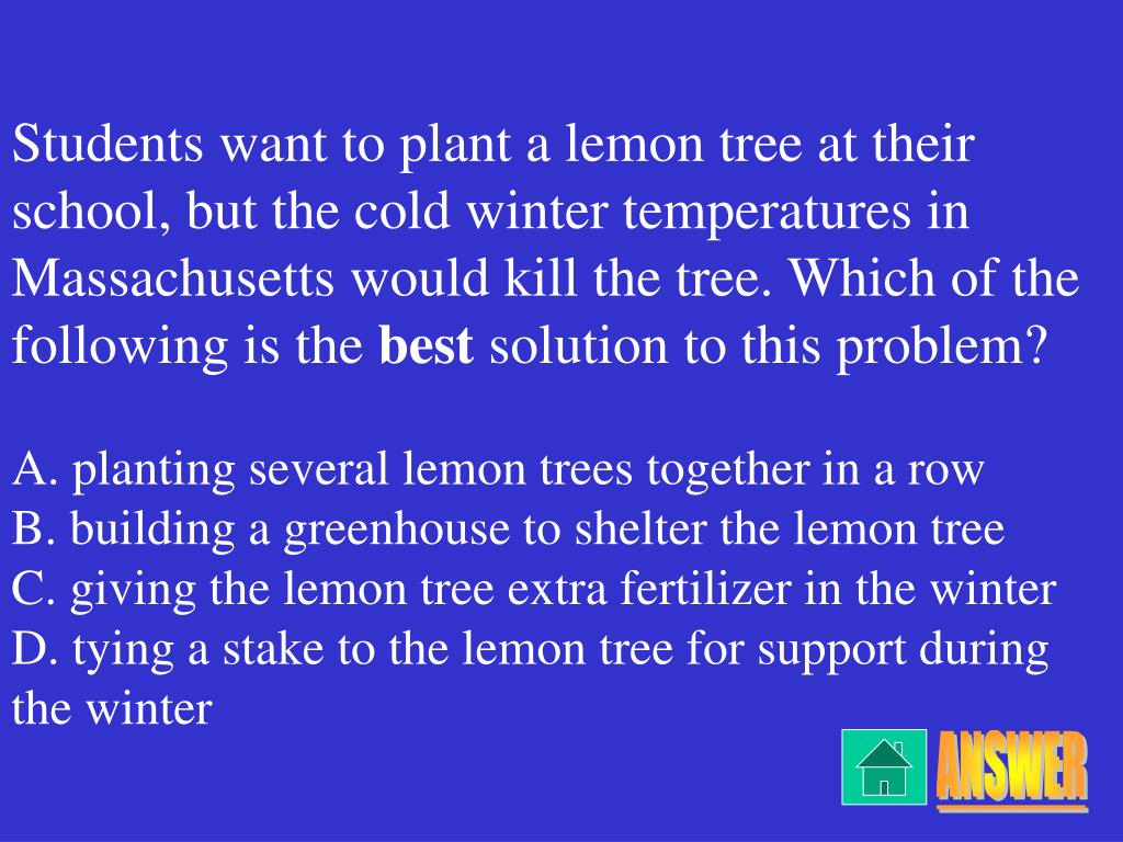 Students want to plant a lemon tree at their school, but the cold winter temperatures in Massachusetts would kill the tree. Which of the following is the