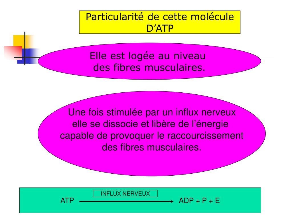 Particularité de cette molécule
