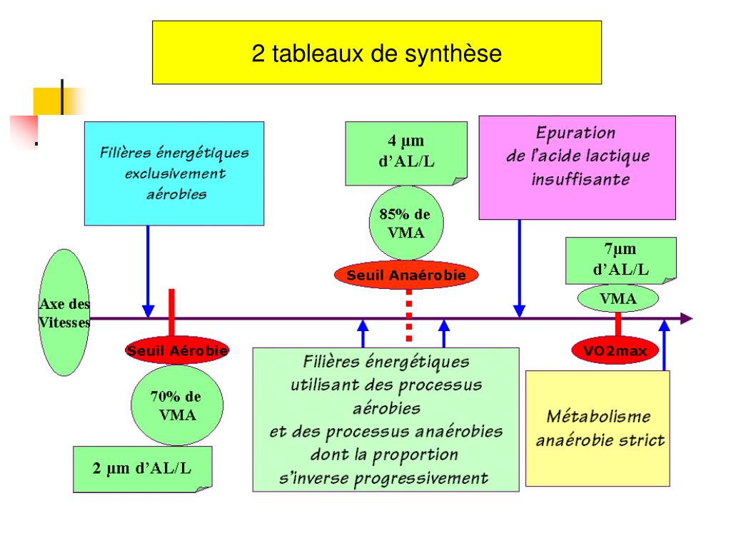 2 tableaux de synthèse