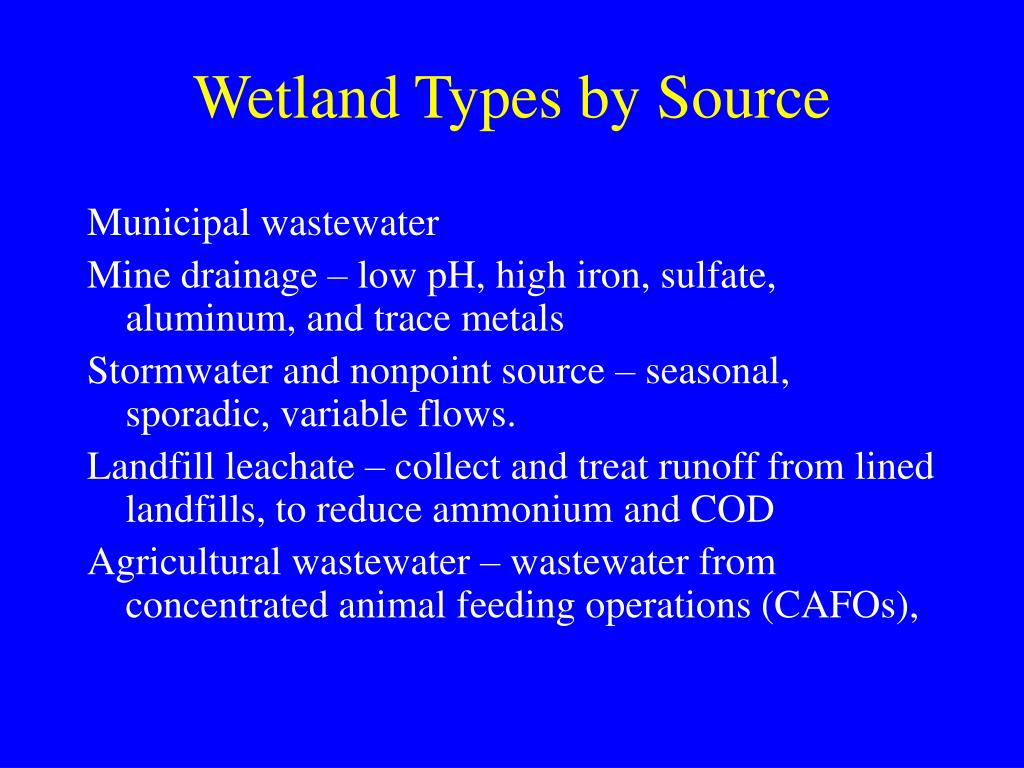 Wetland Types by Source