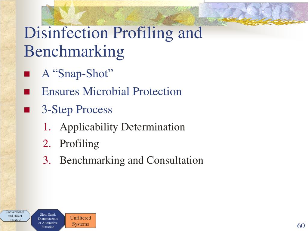 Disinfection Profiling and Benchmarking