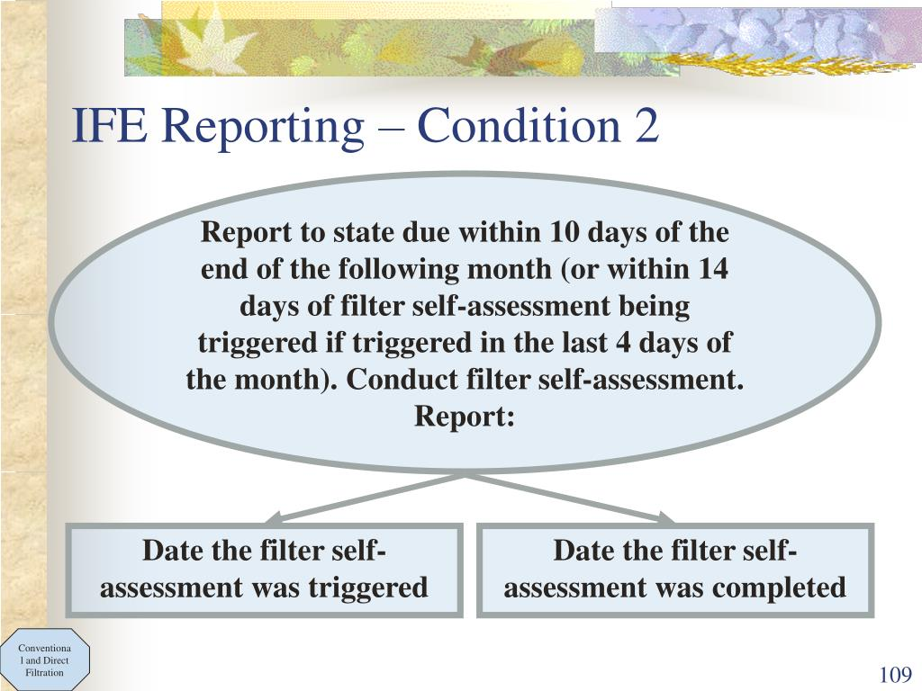IFE Reporting – Condition 2
