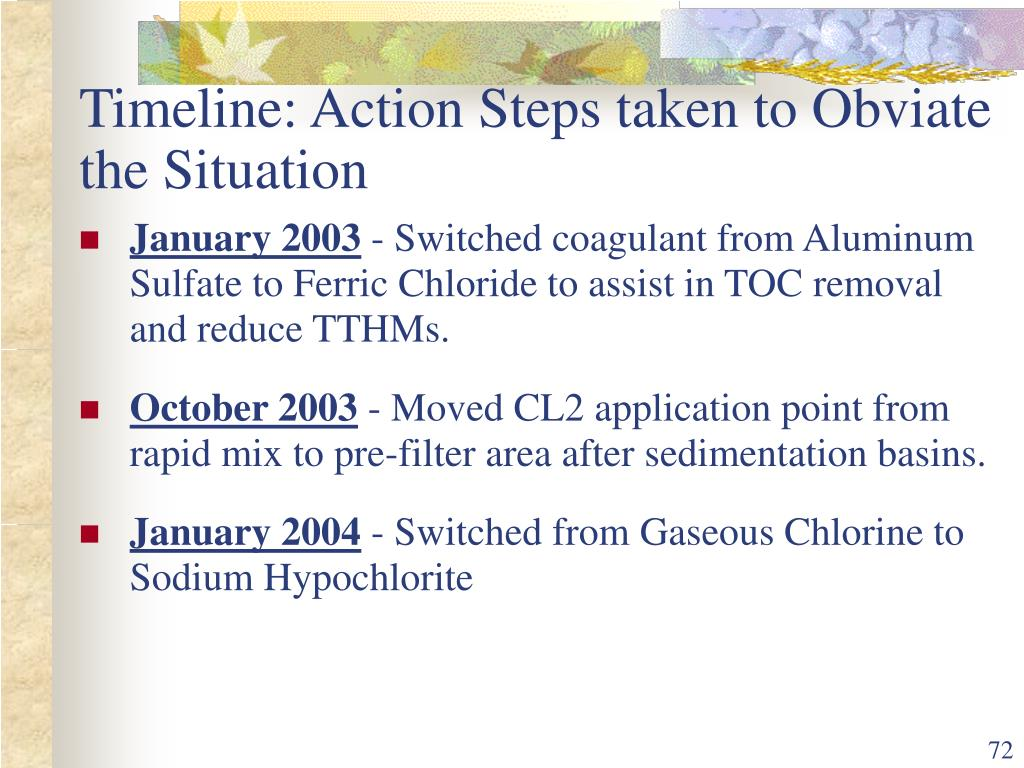 Timeline: Action Steps taken to Obviate the Situation