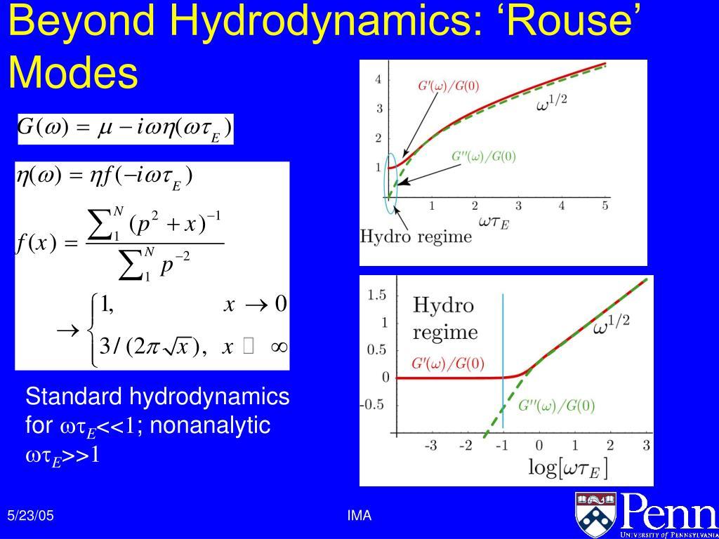 Beyond Hydrodynamics: 'Rouse' Modes