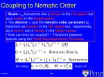 coupling to nematic order