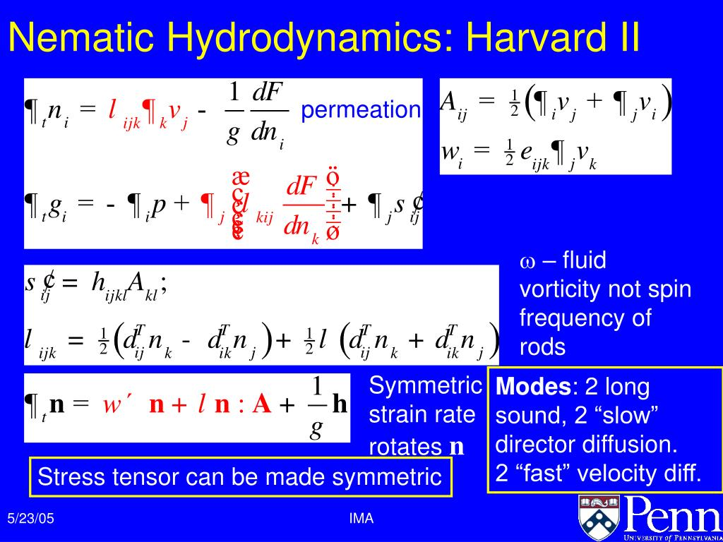 Nematic Hydrodynamics: Harvard II