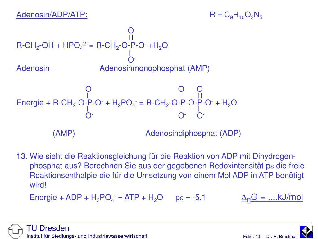 Adenosin/ADP/ATP: