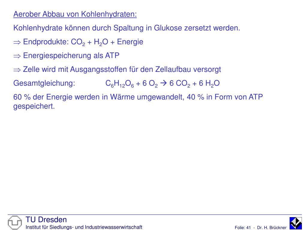 Aerober Abbau von Kohlenhydraten: