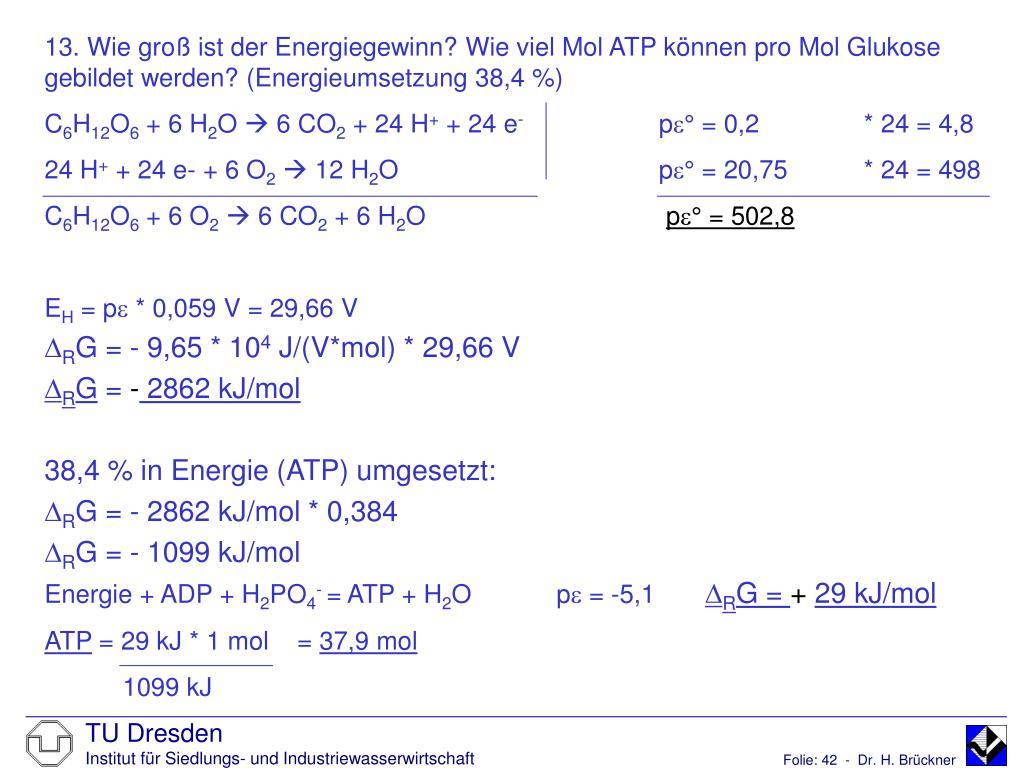 13. Wie groß ist der Energiegewinn? Wie viel Mol ATP können pro Mol Glukose gebildet werden? (Energieumsetzung 38,4 %)