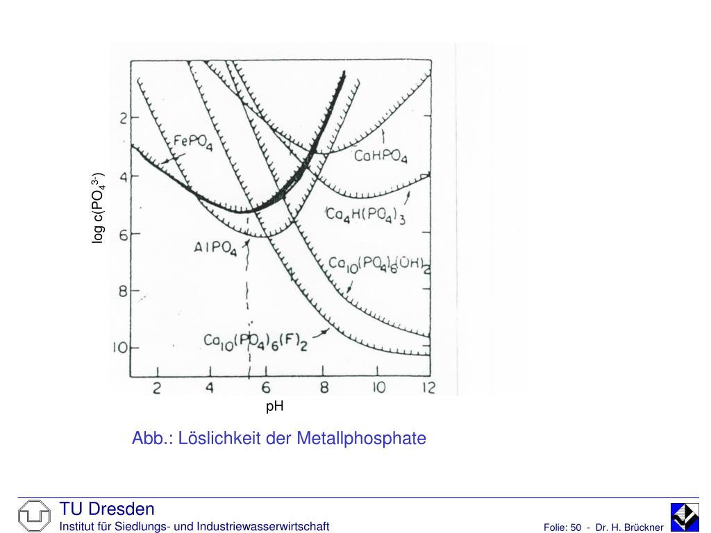 Abb.: Löslichkeit der Metallphosphate