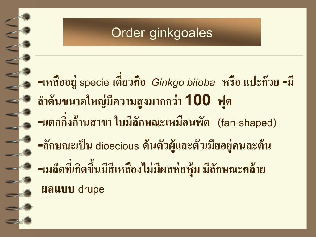 Order ginkgoales