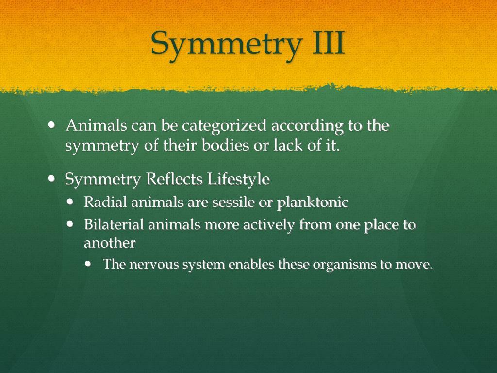 Symmetry III
