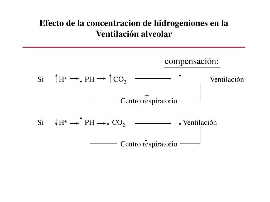 Efecto de la concentracion de hidrogeniones en la Ventilación alveolar