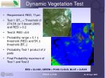 dynamic vegetation test