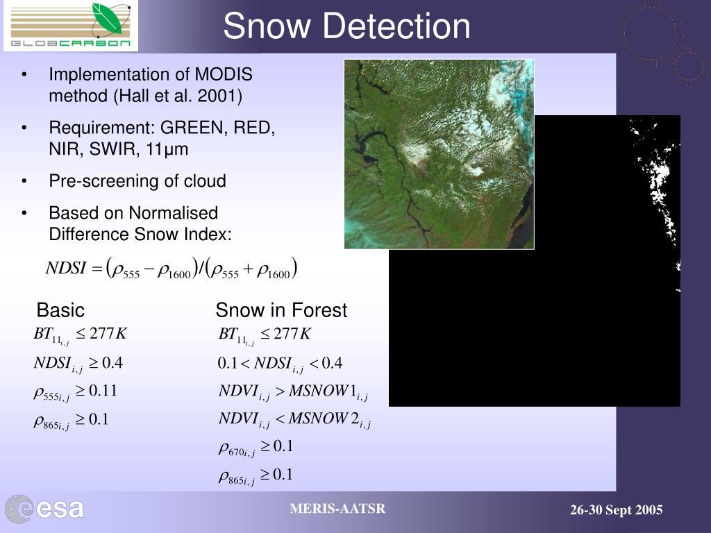 Snow Detection
