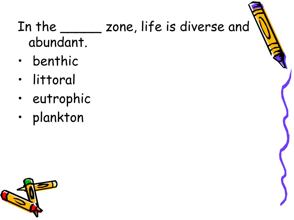 In the _____ zone, life is diverse and abundant.