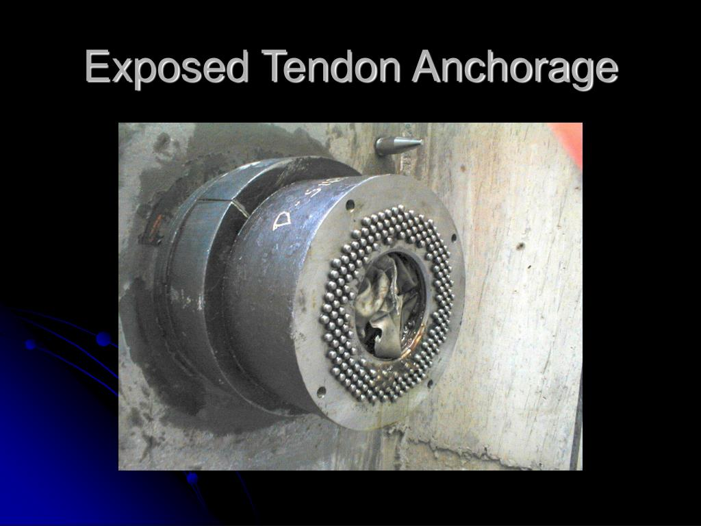 Exposed Tendon Anchorage