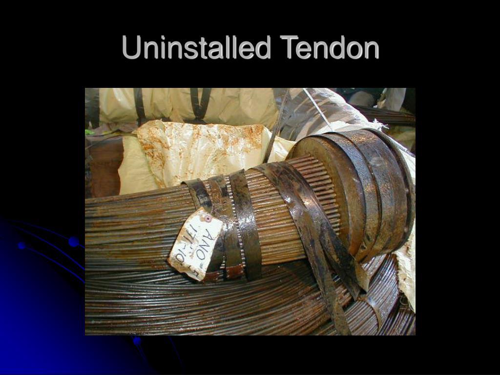 Uninstalled Tendon